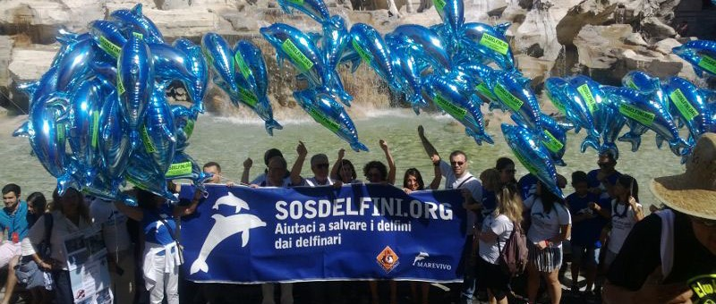 Flashmob LAV Fontana di Trevi