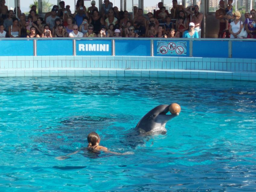 Aquaria in Italy